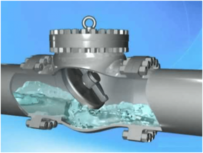 How Does a Check Valve Work? Guide for Plant Managers
