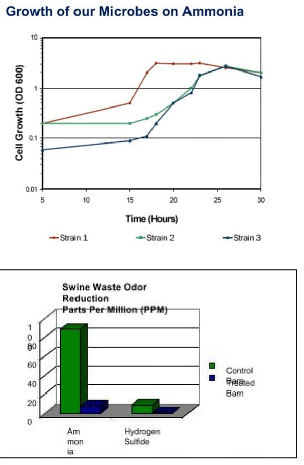 ambr-5N-1 Ammonia Reduction Blend CHM-AMRB-5B