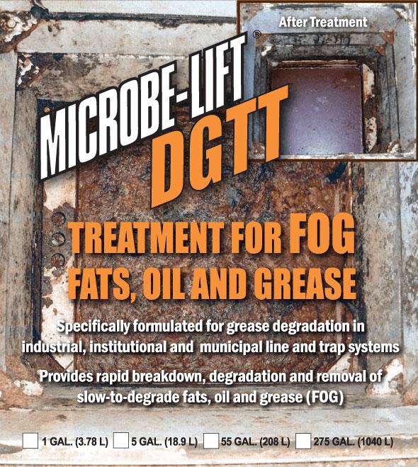 dgtt-cropped DGTT