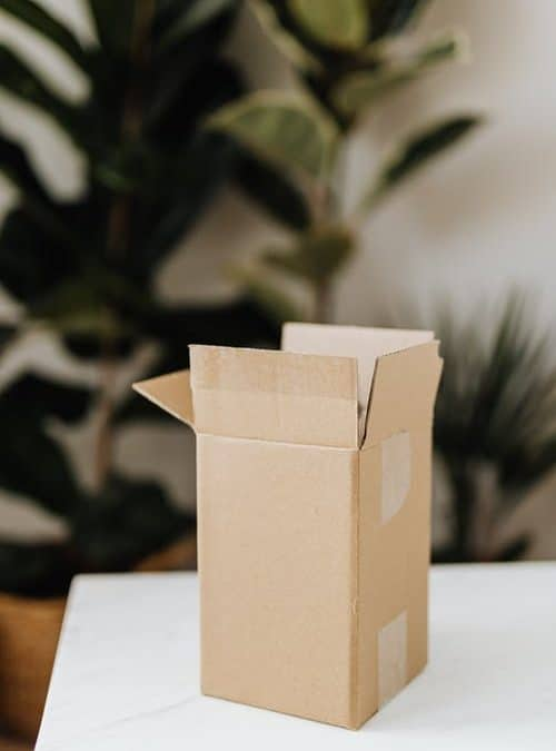 All About Zero-Waste Packaging: Current Trends